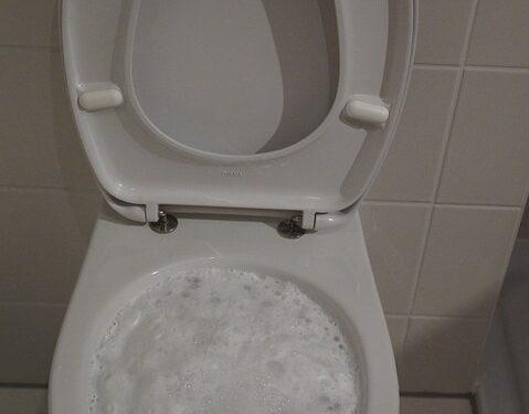 Kanaltehnik съветва – не подценявайте отпушването на тоалетната